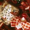 Tante idee per un Natale alla moda
