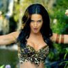 "Katy Perry trucca gli animali nel video ""Roar"""