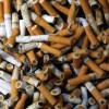 Tutta la verità sulle sigarette!! Ecco l'esperimento che dimostra quanto fanno male (VIDEO)
