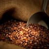 Come sapere se la miscela di caffè che usiamo è di qualità