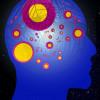 Gli integratori omega 3 come aiuto per la memoria