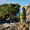 OLIVUM: l'infuso ottenuto dalle foglie d'olivo contro gli inestetismi della cellulite