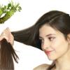 Wasabi: la pianta che stimola il cuoio capelluto