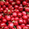 Le ciliegie, un elisir per gli sportivi perché aiutano a recuperare dopo l'esercizio fisico