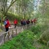 Nordic Tales fa tappa a San Lazzaro di Savena, camminata contro la sclerosi multipla