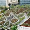Dalla Sicilia a Londra ponte culturale in nome del garden design