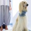 """Dog-à-Porter, freschi coordinati in lino per lei e per """"lui"""""""