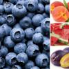 La frutta e le sue proprietà, ecco quella ideale per le vacanze