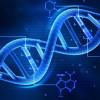 Le sei mutazioni genetiche che ampliano i nostri poteri
