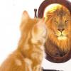 Ricerca: l'autostima mappata nel cervello