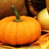 La zucca, un ingrediente ricco di magnesio, ferro e vitamine. La nutrizionista ne illustra le proprietà benefiche