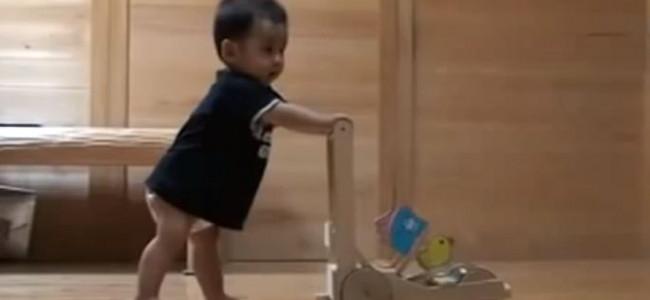Gatto insegna ad un bimbo a camminare (VIDEO)