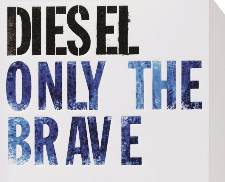 Per i suoi 35 anni Diesel investe 555 mila euro in sostenibilità regalandoli a Only The Brave Foundation