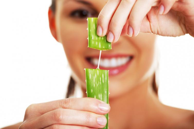 Aloe vera: una pianta antichissima dalle infinite proprietà cosmetiche e terapeutiche