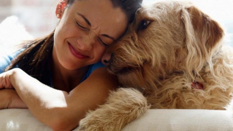 Perchè adottare un cane [VIDEO]