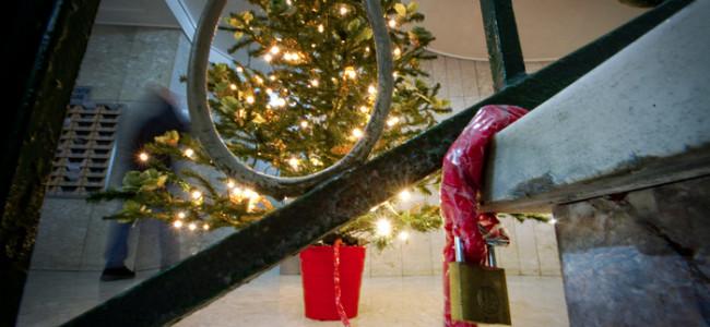 A Napoli gli alberi di Natale hanno l'antifurto