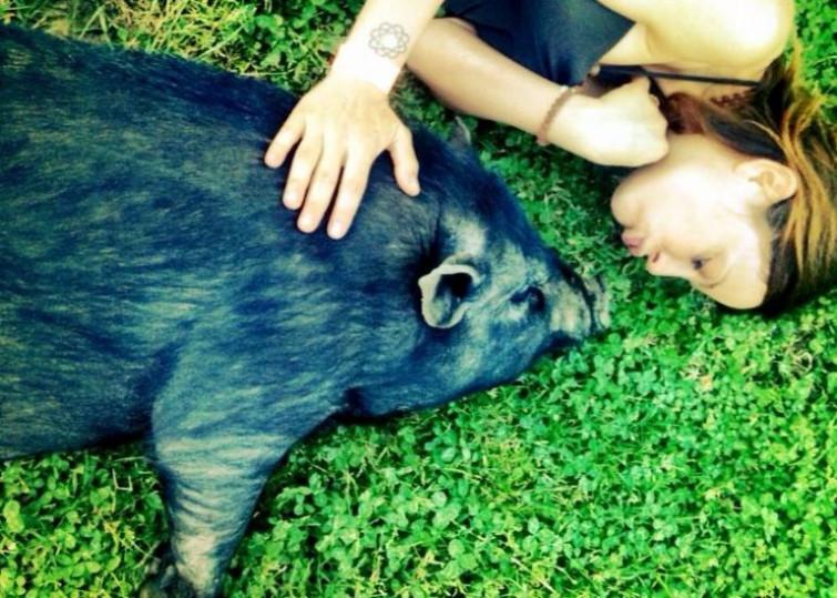 Naike Rivelli compare in una scandalosa foto insieme ad un maiale