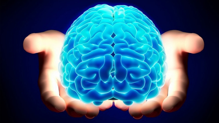 Il cervello memorizza le parole tramite immagini e non tramite gruppi di lettere