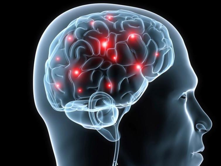 Dai puzzle alla dieta pescetariana, 10 segreti per un cervello giovane