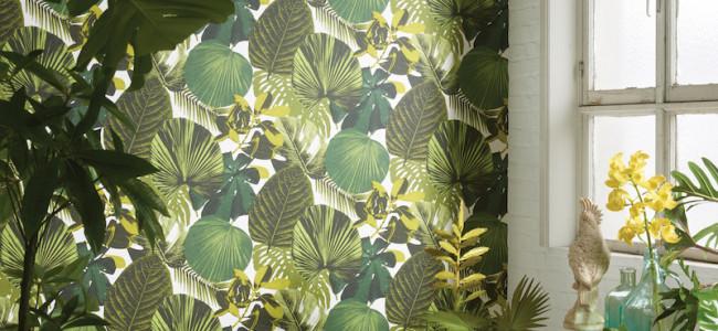 """Tendenza arredo: Urban Jungle La Natura protagonista alle pareti per ambienti """"Green Friendly"""""""
