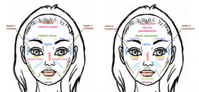 La mappa del volto per leggere sentimenti o salute sul viso