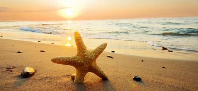 Estate: i consigli ad hoc per trovare le spiagge migliori