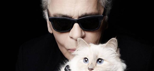 Lagerfeld dedica una capsule collection al suo gatto
