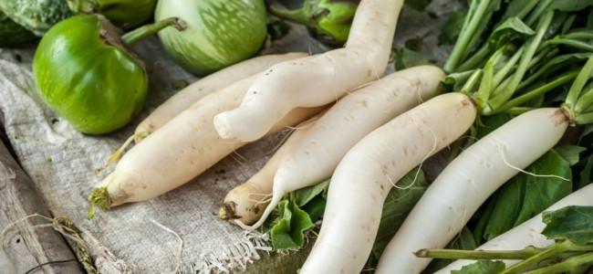 Daikon: la radice dalle grandi proprietà benefiche, la nutrizionista ci spiega come utilizzarla in cucina