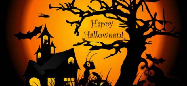 Halloween: le più belle immagini della festività di origine celtica [GALLERY]