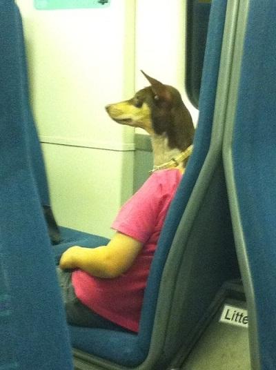 Sembra un uomo con la testa di un cane ....