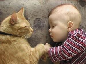 gatto-bambino-dormono