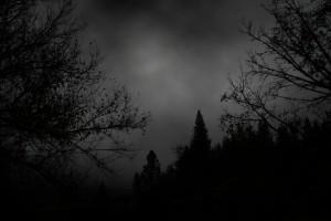 depressive-forest