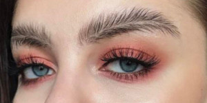featherbrow1